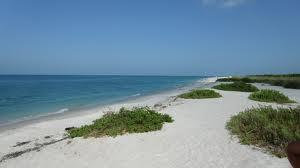 Sanibel Island FL condo rentals