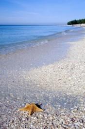Sanibel Island lodging