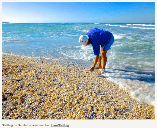 Sanibel Island #1 Among the Top 10 Best U.S. Shelling Beaches