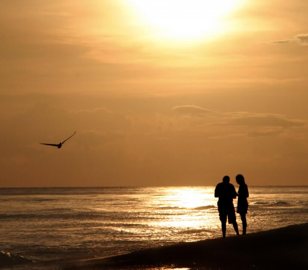 Spend Valentine's Day on Sanibel Island this Year
